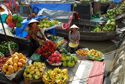 Cai Rang floating market - Orchards At The Weekend (Grafting Tour)